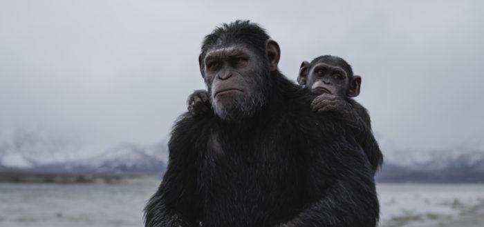 <혹성탈출: 종의 전쟁>은 개봉 첫 주 그간의 시리즈 중 가장 높은 성적으로 출발했다. 사진 이십세기폭스코리아