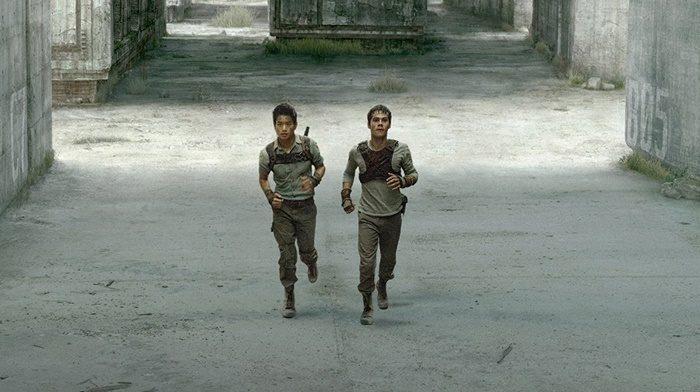 1편 <메이즈 러너>는 미로를 탈출하기 위한 소년들의 생존극이다. 그들에게 길잡이 역할을 하는 존재가 바로 러너다. 사진 이십세기폭스코리아