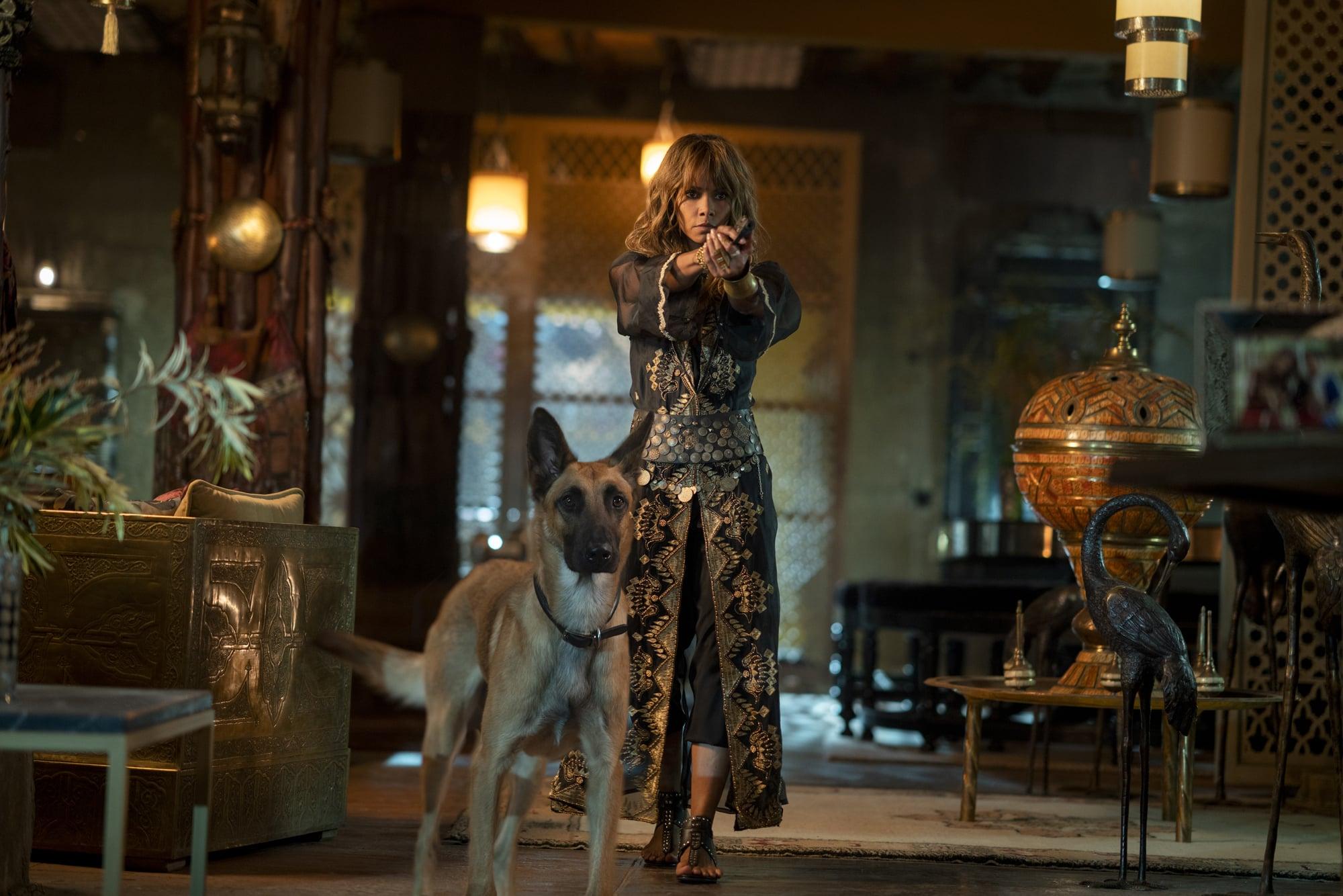영화 '존 윅 3: 파라벨룸' 스틸. 사진  조이앤시네마